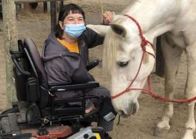 Detail of white horse leaning in for a ear scratch from woman in wheel chair