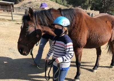 Yong child leads brown horse with halter and rope