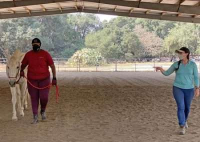 Person leading horse under an enclosure
