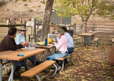 A group of people eating at a picnic table. Horses in the background in corrals.