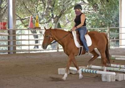 Rider on a walking brown horse practicing on low jumping poles