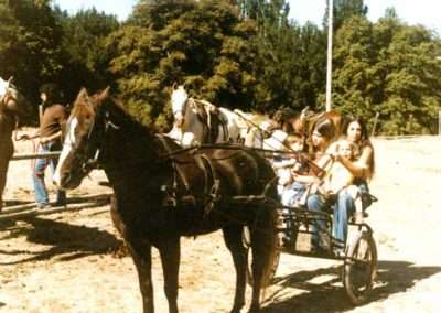 Historical photo of a family in an old fashioned open buggy