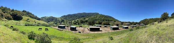 Territorial view of the ranch, horses and corral in background
